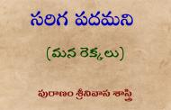 సరిగ పదమని-14