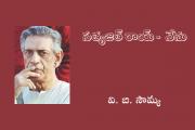 సత్యజిత్ రాయ్ - నేను